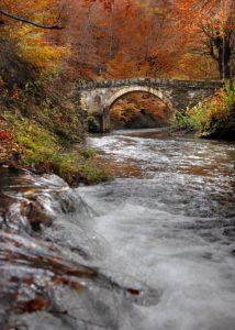 reke ivanjica